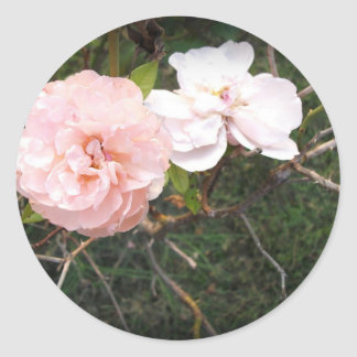 Heaven on Earth Roses in Dark Vignette Round Stickers
