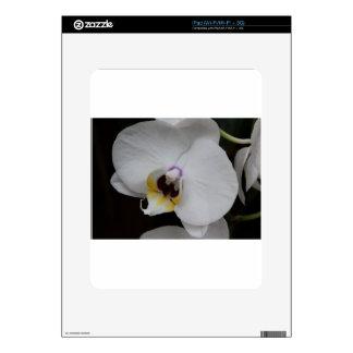 Heaven Scent iPad Skin