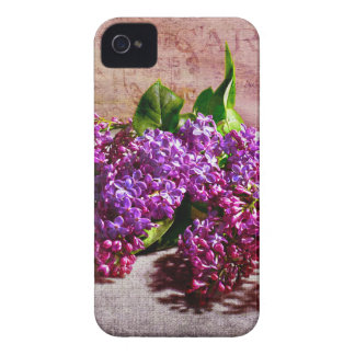 Heaven Scent iPhone 4 Cover