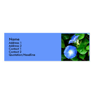 Heavenly Blue Morning Glories Double-Sided Mini Business Cards (Pack Of 20)