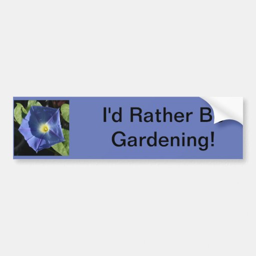 Heavenly Blue Morning Glory Bumper Stickers