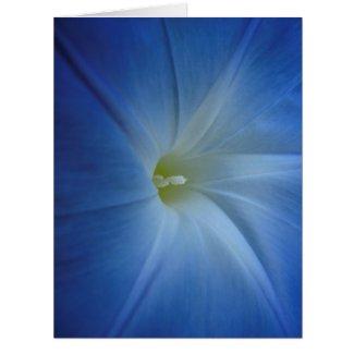 Heavenly Blue Morning Glory Close-Up Birthday Card