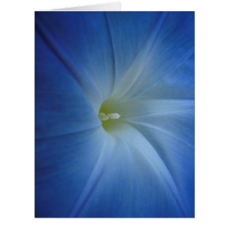 Heavenly Blue Morning Glory Close-Up Birthday Card