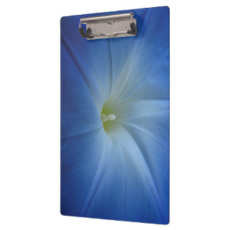 Heavenly Blue Morning Glory Close-Up Clipboard