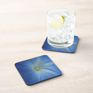 Heavenly Blue Morning Glory Close-Up Drink Coasters