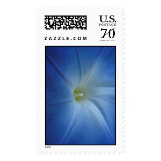Heavenly Blue Morning Glory Close-Up Postage