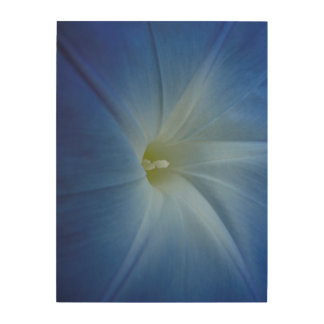 Heavenly Blue Morning Glory Close-Up Wood Wall Art