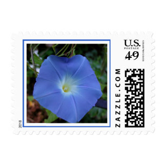 Heavenly Blue Morning Glory Stamp