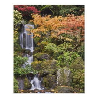 Heavenly Falls and autumn colors Poster