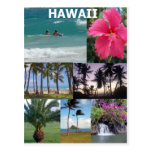 Heavenly Hawaii by Khoncepts Postcard