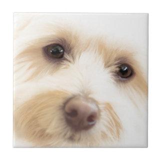 Heavenly Pup Tile