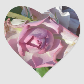 Heavenly Rose Abstract Heart Sticker