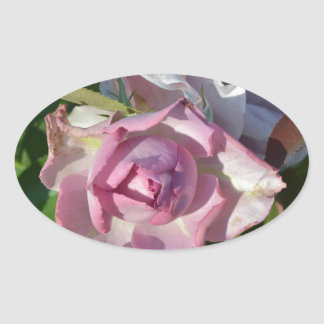 Heavenly Rose Abstract Oval Sticker