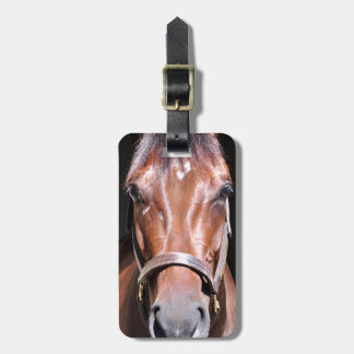 Heavenly View-Filly Bag Tag