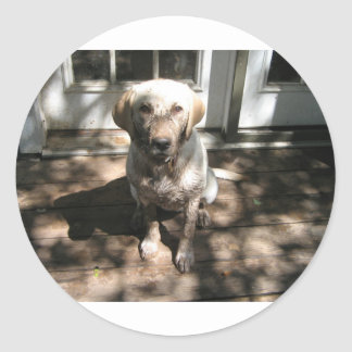 "Heaven's Leash - ""Dirty Dog"" line Classic Round Sticker"