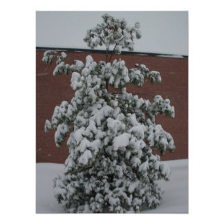 HEAVEY SNOW FALL poster