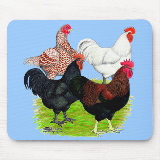 Heavy Breed Rooster Quartet Mouse Pad