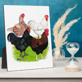 Heavy Breed Rooster Quartet Photo Plaques