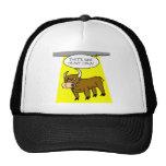 heavy cow mesh hats
