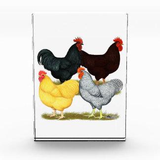 Heavy Rooster Chicken Quartet Acrylic Award
