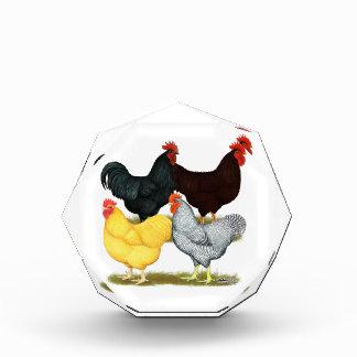 Heavy Rooster Chicken Quartet Award