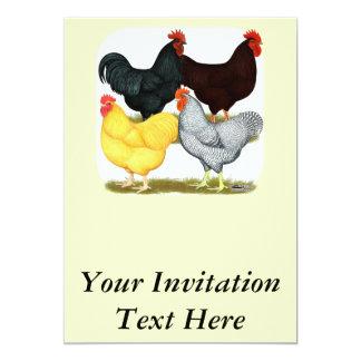 Heavy Rooster Chicken Quartet Card
