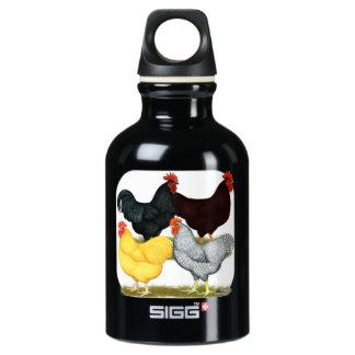Heavy Rooster Chicken Quartet Water Bottle