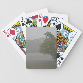 Heavy Windy Storm over a already Flooded Lake Bicycle Playing Cards
