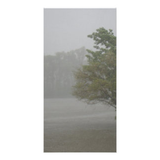 Heavy Windy Storm over a already Flooded Lake Card