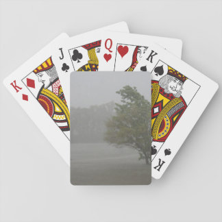 Heavy Windy Storm over a already Flooded Lake Deck Of Cards