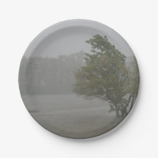 Heavy Windy Storm over a already Flooded Lake Paper Plate