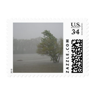 Heavy Windy Storm over a already Flooded Lake Postage
