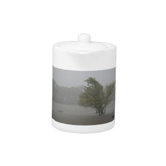 Heavy Windy Storm over a already Flooded Lake Teapot