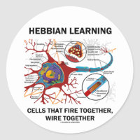 Hebbian Learning Cells Fire Together Wire Together Classic Round Sticker