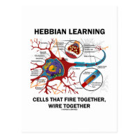 Hebbian Learning Cells Fire Together Wire Together Postcard