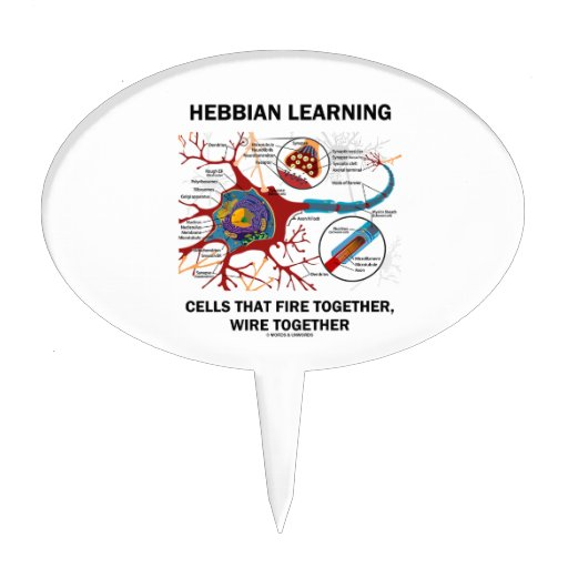 Hebbian Learning Cells That Fire Together Wire Cake Toppers