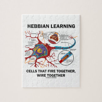 Hebbian Learning Cells That Fire Together Wire Jigsaw Puzzle