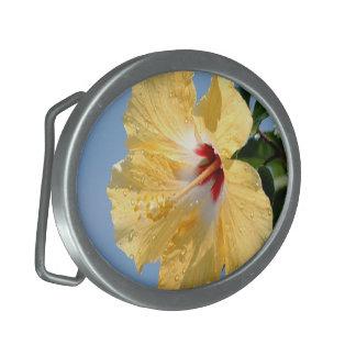 Hebilla del cinturón amarilla de la flor del hibis hebillas de cinturon ovales