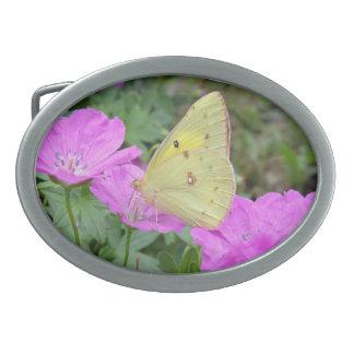 Hebilla del cinturón amarilla de la mariposa hebilla cinturon oval