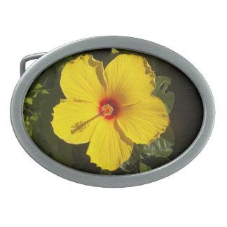 Hebilla del cinturón amarilla del hibisco hebillas de cinturón ovales