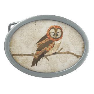 Hebilla del cinturón ambarina del búho de las momi hebilla de cinturon oval