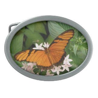 Hebilla del cinturón anaranjada de la mariposa de  hebilla de cinturon