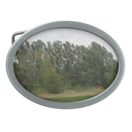 Hebilla del cinturón blanca del paisaje del árbol  hebilla de cinturón oval