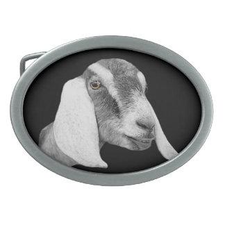 Hebilla del cinturón de la cabra de la lechería de hebilla cinturón oval