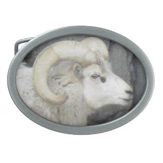 Hebilla del cinturón de la cabra de montaña hebillas cinturón ovales