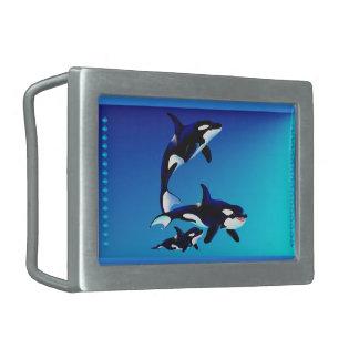 Hebilla del cinturón de la familia de la orca hebillas de cinturón rectangulares