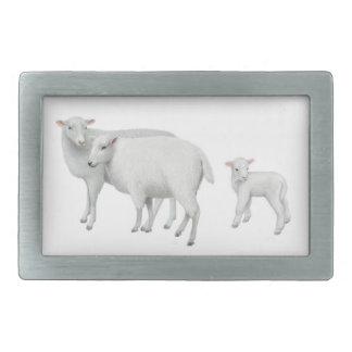 Hebilla del cinturón de la familia de las ovejas hebillas cinturón rectangulares