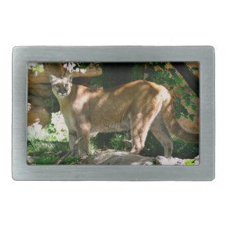 Hebilla del cinturón de la foto del puma hebilla cinturón