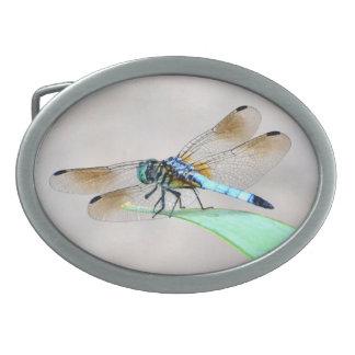 Hebilla del cinturón de la libélula hebillas cinturón