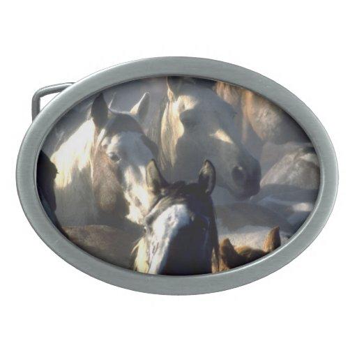 Hebilla del cinturón de la manada del caballo salv hebillas de cinturón ovales